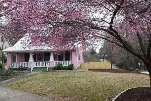 "Trisha Simpson's pink house is a ""Face"" of the Race."